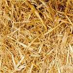 Timbri per sapone – migliori prodotti, come scegliere e prezzi